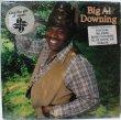 画像1: BIG AL DOWNING/SAME'82 (1)
